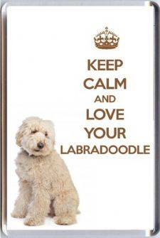 KEEP CALM and LOVE YOUR LABRADOODLE with a cream Labradoodle Image Fridge Magnet